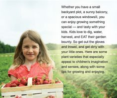 Gardening with Kids: 8 fruits and vegetables kids can help plant