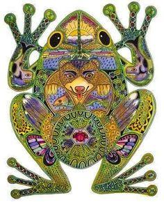 Kambo Frog Venom Traditional Shamanic Medicine