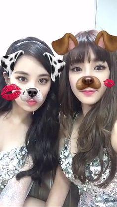 seofany