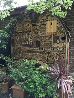Mini beast hotel at Cadogan Gardens South Mini Beasts, Herbaceous Border, English Country Gardens, Woodland, City Photo, London, Places, Green, London England