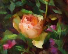 Apricot Rose - original oil painting, alla prima oil painting, one of a kind - Patricia Buchanan - Oil Painting Flowers, Oil Painting On Canvas, Muse Art, Art Competitions, Ink Drawings, Painting Inspiration, Flower Art, Illustration Art, Just For You