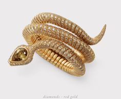Hemmerle Serpent / Snake Bracelet with diamond in red gold Snake Bracelet, Snake Jewelry, Opal Jewelry, Animal Jewelry, High Jewelry, Sterling Silver Jewelry, Jewelry Accessories, Jewelry Design, Silver Ring