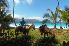 "Day ride to one of the most beautiful beaches ""Playa Rincon"" Horse riding Dominican Republic www.stable-mates.com"