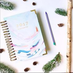"""Hey, @whisktangofox, we are totally cheering for you to stick with your goals this year!!! """"Is anyone else in shock that we are so close to 2017?! I was so unorganized this year and I'm determined to stay focused and on track next year. Step 1: use this amazing planner from@startplanner to get everything in order and to STAY in order. This thing has everything you could ever need in a planner and more-"""" you can totally do it!! 😁👍🎉 #startplanner #plannercommunity #plannerlife…"""