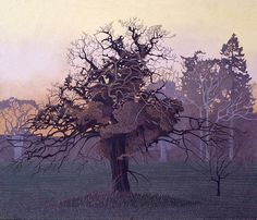 Annie Ovenden, 'Respryn Oak'