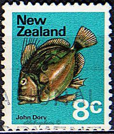 New Zealand.  JOHN DORY.  Scott   448 A173, Issued 1970 Nov 4, Wrmk 253, Perf. 13 1/2 x 13, 8c. /ldb.