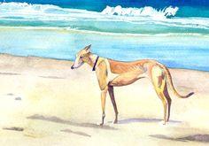 """Mae at Dog Beach"" - watercolor Greyhound Art, Italian Greyhound, Beach Watercolor, Dog Beach, Whippets, Greyhounds, Kid Crafts, Dog Art, Best Dogs"