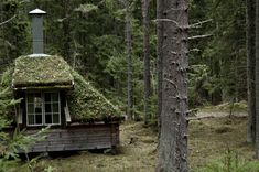 sweden I can picture the fairies floating around how enchanting