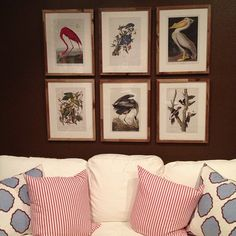 Holly Mathis found a book of Audubon prints at barnesandnoble.com. Looks like they're trimmable to 8x10 – which means you could use changeable gallery frames  switch them out along with your pillow covers –for a fresh look in no time. Check out loads of affordable, frameable prints by searching B for 'poster books'.