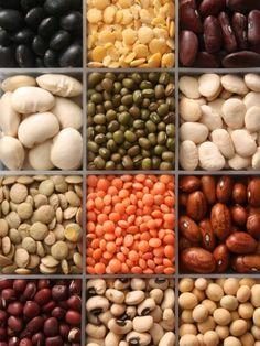 Great article on dry beans and their uses!  #article #bean #varieties #food #recipes #meals #kitchen #diy #cooking #dinner #healthy