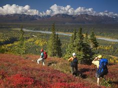 """Hikers in Denali State Park, just east of the national park, take in awe-inspiring views of the #Alaska Range in #fall."""
