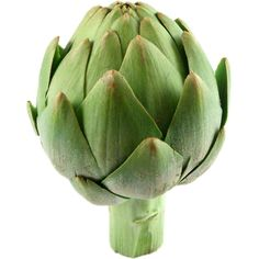 Artichoke :: Bile Production - It has been said that 30 minutes after eating a globe artichoke, bile flow is increased by over This is huge for gall bladder health and fat digestion and absorption. Grilled Artichoke, Still Life Photos, Food Illustrations, Fruits And Vegetables, Quick Easy Meals, Royalty Free Photos, Health Benefits, Grilling, Still Life