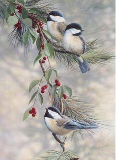 Vintage.birdies