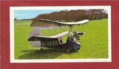 MIGNET POU DU CIEL The Flying Flea Home build aircraft | eBay