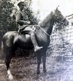 The real-life War Horse: Incredible story of stallion nicknamed 'The Sikh' who WALKED back to Britain from Russia after spending years delivering supplies to troops