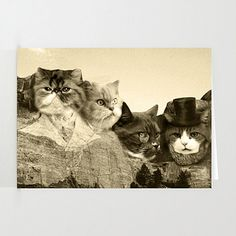 Meowmore (3 Pack) Stationary Cards