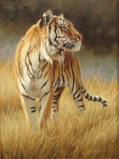 A Regal Pose - Tiger by Krystii Melaine Wildlife Paintings, Wildlife Art, Animal Paintings, Animal Drawings, Big Cats Art, Cat Art, Beautiful Cats, Animals Beautiful, Tiger Artwork