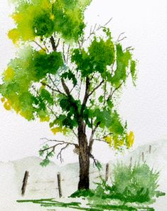 Jim's Watercolor Gallery, Oak Tree tutorial