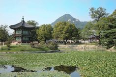 The Ultimate Seoul Itinerary: 3 Days in Seoul | The Planet D South Korea Destinations, South Korea Travel, Seoul Itinerary, Bukchon Hanok Village, Nami Island, Han River, Day Tours, Walking Tour, Heritage Site