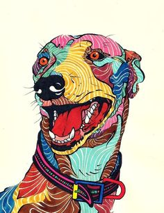 kaelkasabian: Dog - Perro - Galgo - Colors. via Tumblr