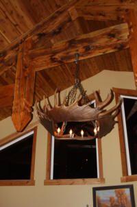 Moose Antler Chandeliers and Lighting