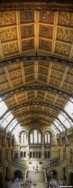 Panoramic ceiling. Fab shot of one of my most favorite spaces in London, Natural History Museum.