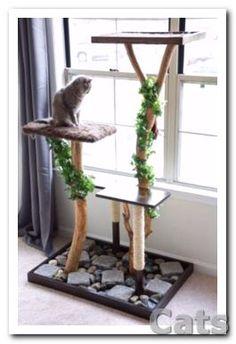 My Real DIY Cat Tree!