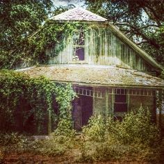 #abandoned #ruined #farmhouse  Photo by Margie House, edit by veraviola_vintage on Instagram