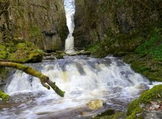 From the fairy tale settings to the highest in the land located at the back of a pub, Yorkshire is a county awash with waterfalls. Waterfall Trail, Small Waterfall, Yorkshire Dales, West Yorkshire, Waterfalls In Yorkshire, Cascade Falls, Green Dragon, Walk In The Woods, Beautiful Waterfalls
