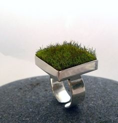 Gather, Square Moss Ring by AdornJewelry (Etsy) Jewelry Art, Jewelry Rings, Jewelry Accessories, Jewelry Design, Unique Jewelry, Jewellery, Jewelry Ideas, Gold Jewelry, Art Bio