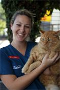 For #cat Boarding Emergencies & After Hours, House call & Ambulance, call Gordon vet any time.