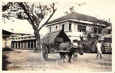 Jose Rizal's Home, Calamba, Laguna. Filipino Art, Filipino Culture, University Of Santo Tomas, Spanish Language School, Jose Rizal, School Places, Jeepney, Philippines Culture, Filipiniana