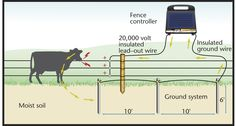 The grounding circuit is a critical component of your electric fence. Here's how to install it properly.
