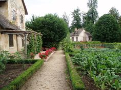 Vegetable gardens bounded by buxus, front-yard friendly