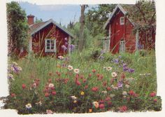 Scandinavian Country Style - summer cottage in Finland Swedish Cottage, Red Cottage, Swedish House, Red Houses, Little Houses, Beautiful World, Beautiful Homes, Beautiful Places, Summer Cabins