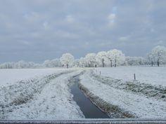 winterlandschap overijssel