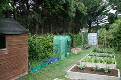 How to make your own polytunnel – Gardening & Permaculture Design Diy Greenhouse Plans, Greenhouse Gardening, Hydroponic Gardening, Hydroponics, Permaculture Design, Garden Netting, Hydroponic Growing, Invasive Plants, Garden Arches