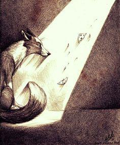 Fox ( couple fox)
