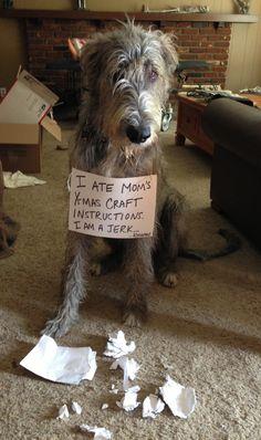 Paper Massacre