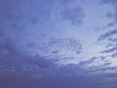 Vale muito observar o céu, seja apenas para olhar um dia todo azul… tenha um bom fim de semana amigos. (em Piúma)