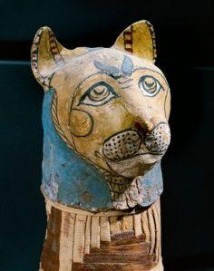 Cat mummy, detail
