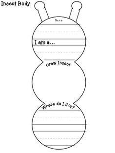 Create an Insect. Kindergarten/First grade writing. 1st Grade Science, Kindergarten Science, Science Classroom, Teaching Science, Kindergarten Classroom, Kindergarten Assessment, Classroom Decor, Teaching Ideas, Preschool