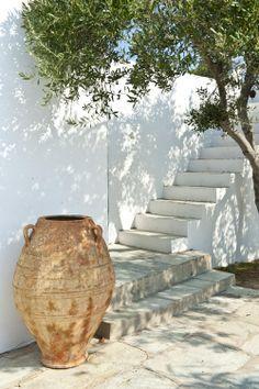 Olive tree. Whitewash. Pottery.  Greece