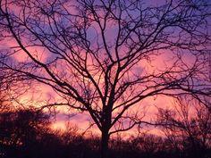 Minneapolis sunrise by JL Lundstrom