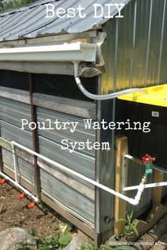 Building A Chicken Coop 483292603763987693 - This month Leighton has been working on the watering system in our chicken and duck run. We are trying to make our system more self-sufficient and wanted to include rain water as the main s… Source by coazu Backyard Chicken Coop Plans, Building A Chicken Coop, Chickens Backyard, Water Feeder For Chickens, Urban Chicken Coop, Backyard Ducks, Chicken Roost, Chicken Garden, Chicken Watering System