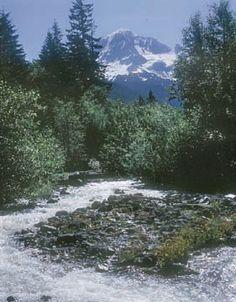 Oregon Hikes - Ramona Falls