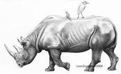 Black rhinoceros by LeenZuydgeest on DeviantArt Realistic Animal Drawings, Pencil Drawings Of Animals, Animal Sketches, My Drawings, Rhino Tattoo, Rhino Art, Le Clan, Baby Gorillas, Family Drawing