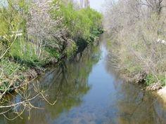 Más detalles del río