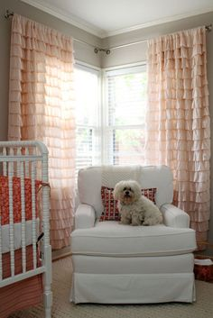 Curtains!!  @Kayli Wiseman, don't you think Lucy and her ruffled butt would like these better?????