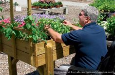 Exercising their green thumbs helps seniors reap mental and physical rewards. Accessible Gardens founder Ray LaRocque